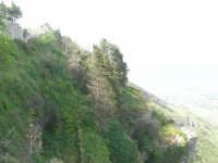 le pendici del monte Erice sotto la Villa comunale Balio ed in fondo la cupola della chiesa di S. Giovanni - 1 maggio 2008   - Erice (928 clic)