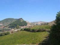 panorama - 4 ottobre 2007  - Calatafimi segesta (868 clic)