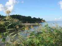Baia di Guidaloca - la foce del fiume - 11 ottobre 2009  - Castellammare del golfo (938 clic)