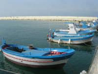 al porto - 2 giugno 2008    - Balestrate (957 clic)