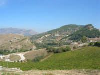 panorama - 4 ottobre 2007  - Calatafimi segesta (810 clic)