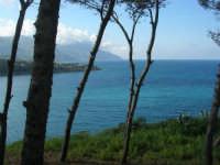 Baia di Guidaloca - 5 aprile 2009   - Castellammare del golfo (888 clic)