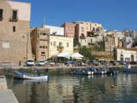Al porto: case e Castello - 15 marzo 2008   - Castellammare del golfo (676 clic)