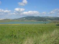 Lago Arancio - 25 aprile 2008   - Sambuca di sicilia (1119 clic)