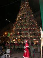 l'albero e Babbo Natale in piazza Ciullo - 21 dicembre 2008    - Alcamo (719 clic)