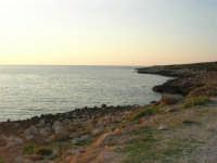 Golfo di Bonagia: la costa nei pressi del Monte Cofano - 12 ottobre 2008  - Cornino (830 clic)