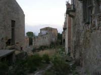 ruderi del paese distrutto dal terremoto del gennaio 1968 - 2 ottobre 2007   - Poggioreale (719 clic)