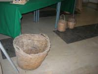 Progetto Didattico Bacco . . . non solo vino - I.C. G. Pascoli - 12 dicembre 2008   - Castellammare del golfo (447 clic)