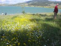 Lago Arancio - 25 aprile 2008   - Sambuca di sicilia (1634 clic)