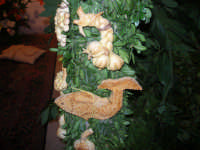 Cene di San Giuseppe - 15 marzo 2009  - Salemi (2129 clic)