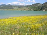 Lago Arancio - 25 aprile 2008   - Sambuca di sicilia (1651 clic)