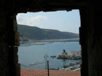 vista sul porto - 7 maggio 2006  - Castellammare del golfo (788 clic)