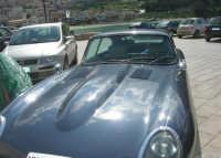 al porto - Jaguar - 5 aprile 2009   - Castellammare del golfo (2032 clic)