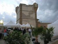 sullo sfondo dell'antica tonnara, BONTON - la II Rassegna Enogastronomica di Tonno e Prodotti di Tonnara, che presenta, oltre al tonno, altri prodotti tipici del territorio trapanese - interno del Villaggio Bonton, ai piedi della Torre  - 3 giugno 2007  - Bonagia (2243 clic)