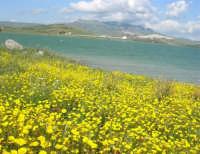 Lago Arancio - 25 aprile 2008   - Sambuca di sicilia (1578 clic)