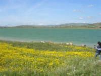 Lago Arancio - 25 aprile 2008   - Sambuca di sicilia (1679 clic)