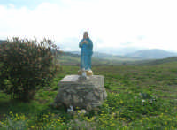statua della Madonna ai margini della strada e panorama della campagna - 18 gennaio 2009  - Segesta (3180 clic)