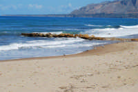 spiaggia di levante . . . con gabbiani - 5 ottobre 2008   - Balestrate (947 clic)
