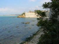 cala Petrolo - 7 maggio 2006  - Castellammare del golfo (771 clic)