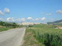 sulla strada che porta a Sambuca di Sicilia - 25 aprile 2008   - Sambuca di sicilia (2004 clic)