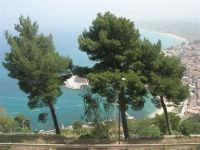 panorama della città e del porto dall'Hotel Belvedere - 20 aprile 2008  - Castellammare del golfo (573 clic)