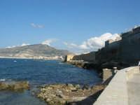 Via delle Sirene: costa lato nord, vista della città e monte Erice  - 28 settembre 2008   - Trapani (868 clic)