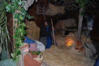 Presepe Vivente - 26 dicembre 2008  - Balata di baida (2516 clic)