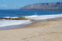 spiaggia di levante . . . con gabbiani - 5 ottobre 2008   - Balestrate (1020 clic)