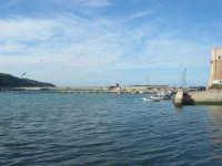 porto - 13 marzo 2009  - Castellammare del golfo (1445 clic)