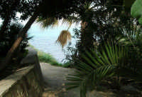 uno scorcio sul mare - 7 maggio 2006  - Castellammare del golfo (1244 clic)