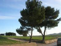 paesaggio campestre nei presi del lago Rubino - 21 febbraio 2009   - Fulgatore (2578 clic)