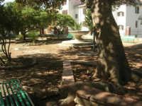 giardino pubblico - 5 ottobre 2007   - Montelepre (2615 clic)