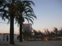 Cous Cous Fest 2007 - In spiaggia Al Waha (in arabo oasi nel deserto) - 28 settembre 2007   - San vito lo capo (830 clic)