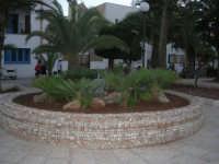 vasca giardino nella villa antistante la spiaggia - 28 settembre 2007   - San vito lo capo (693 clic)