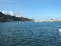 il porto - 6 dicembre 2008  - Castellammare del golfo (500 clic)