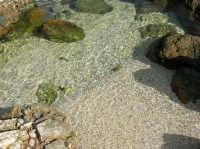 tra Scopello e la Riserva Naturale dello Zingaro: Cala Mazzo di Sciacca - 29 ottobre 2006  - Castellammare del golfo (780 clic)