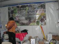 Cous Cous Fest 2007 - L'olio d'oliva di Castelvetrano (TP) - 28 settembre 2007   - San vito lo capo (927 clic)