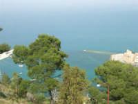 panorama del porto dall'Hotel Belvedere - 20 aprile 2008  - Castellammare del golfo (548 clic)