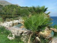 tra Scopello e la Riserva Naturale dello Zingaro: Cala Mazzo di Sciacca - 29 ottobre 2006  - Castellammare del golfo (964 clic)