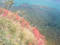 il mare dal belvedere - 25 aprile 2008   - Sciacca (1463 clic)