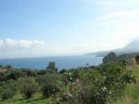 panorama - 29 ottobre 2006  - Scopello (1087 clic)