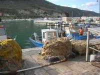 al porto - 11 ottobre 2009  - Castellammare del golfo (1565 clic)