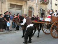 Festa della Madonna di Tagliavia - 4 maggio 2008   - Vita (664 clic)