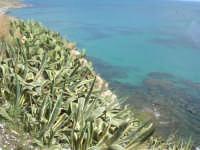 il mare dal belvedere - 25 aprile 2008   - Sciacca (1321 clic)