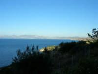 Dalla Riserva dello Zingaro il Golfo di Castellammare - 4.7.2005  - Castellammare del golfo (1340 clic)