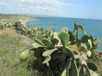 la costa ed il mare dal belvedere - 25 aprile 2008   - Sciacca (1444 clic)