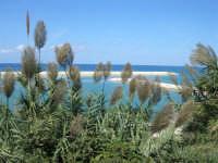 vista sul porto e golfo di Castellammare - 5 ottobre 2008  - Balestrate (1205 clic)