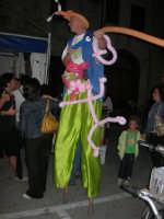 Cous Cous Fest 2007 - Artista di strada: trampoli e palloncini per la gioia dei bambini - 28 settembre 2007   - San vito lo capo (1126 clic)