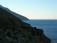 Riserva dello Zingaro - 4.7.2005  - Castellammare del golfo (1316 clic)