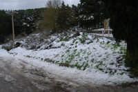 neve sul monte Bonifato - 15 febbraio 2009   - Alcamo (2199 clic)